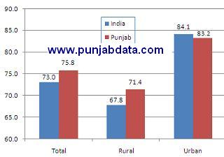 Literacy rate in Punjab
